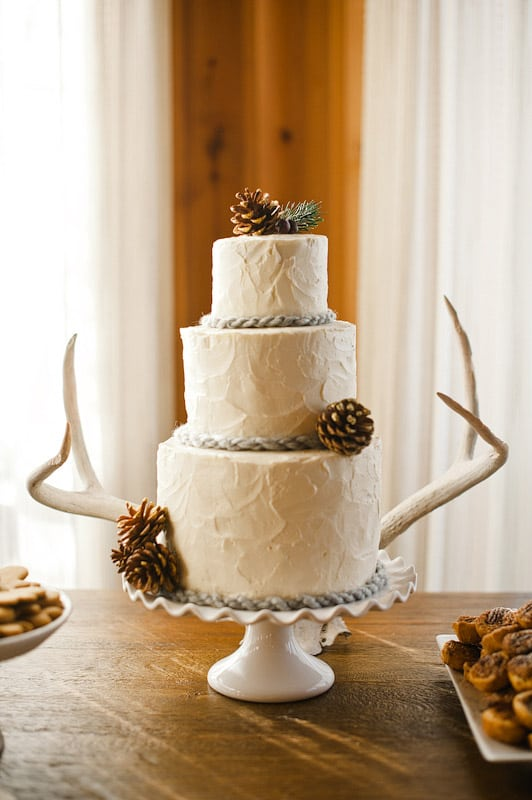 http://abccoolimages.com/pine+cone+wedding+cakes?image=914223623